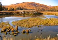 геологи СФУ призывали пустить их наполупустые заповедные территории