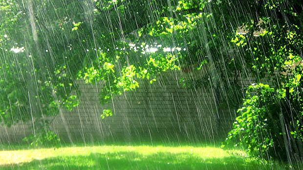 summer rain harry wood