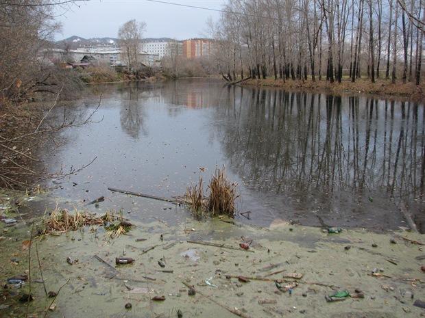 благоустройство озер Пашенный Красноярск