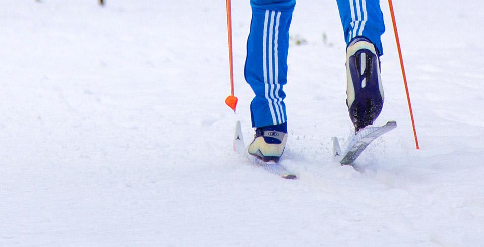Лыжник Красноярск